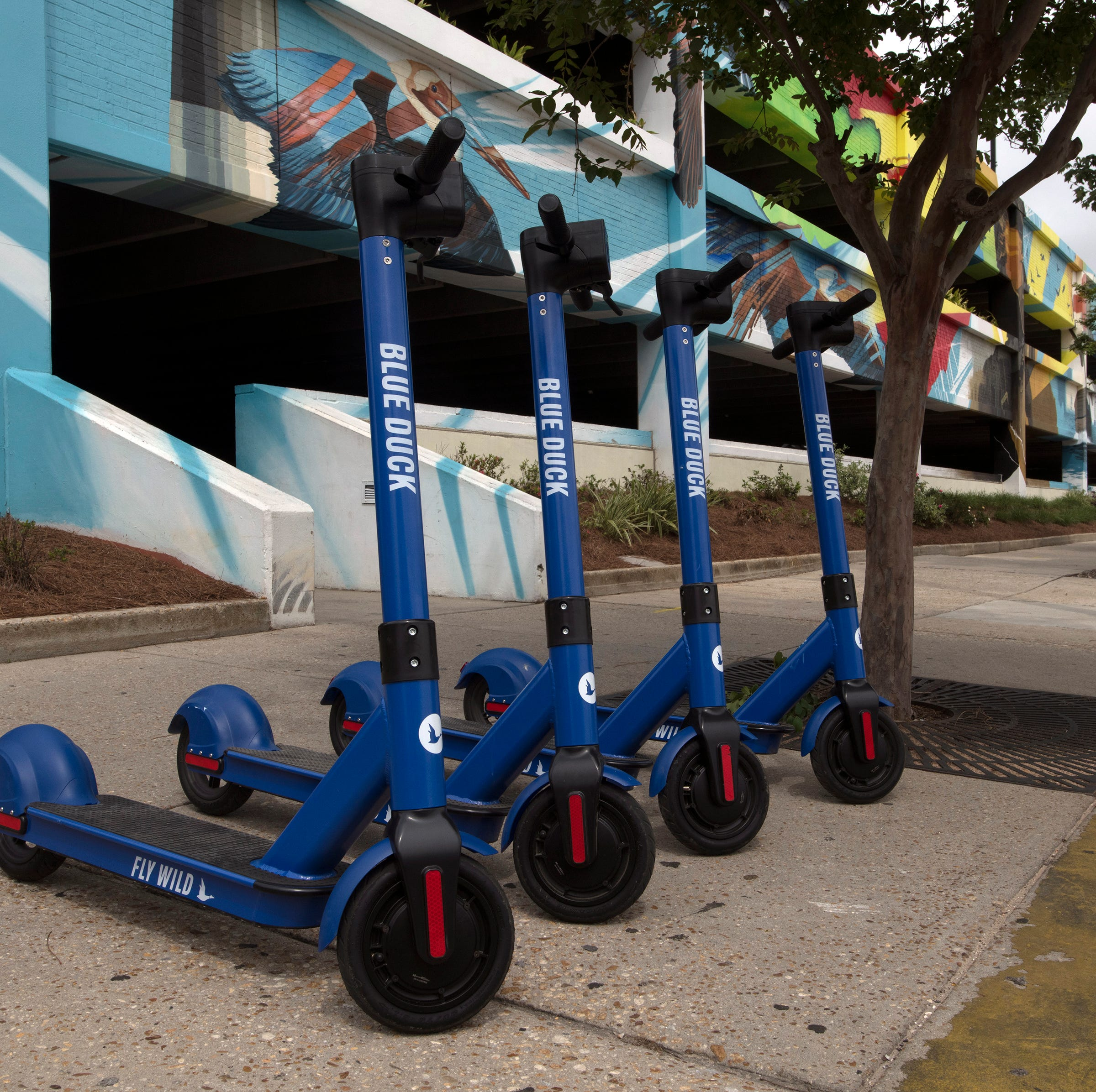 Pensacola removes Blue Duck Scooters from downtown, plans to review their legality