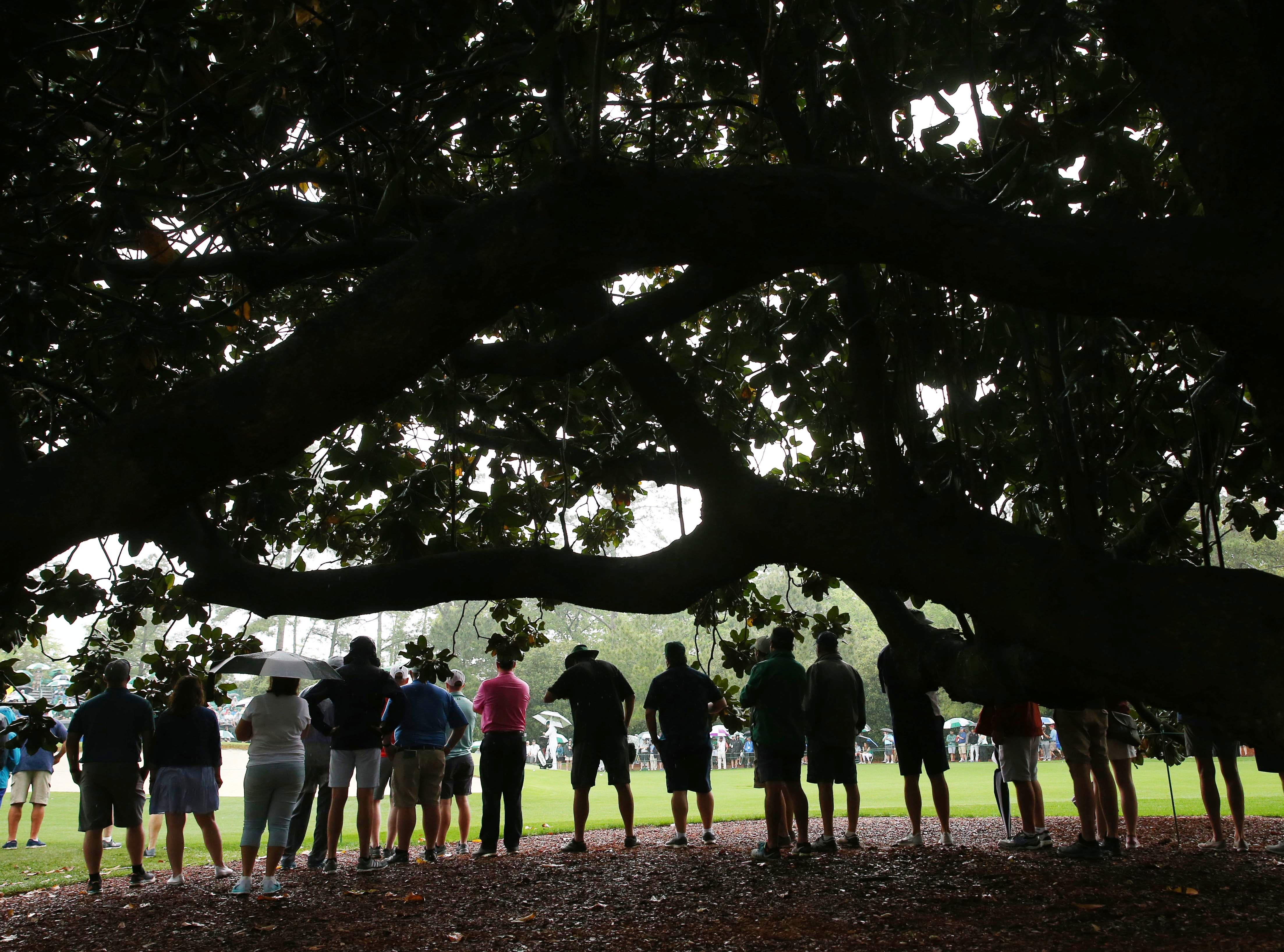 Apr 12, 2019; Augusta, GA, USA; Patrons watch from under the big oak tree during the second round of The Masters golf tournament at Augusta National Golf Club. Mandatory Credit: Rob Schumacher-USA TODAY Sports
