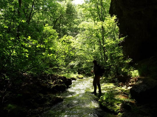 A hiker explores a stream on what will become a new addition to Rocky Creek Conservation Area.