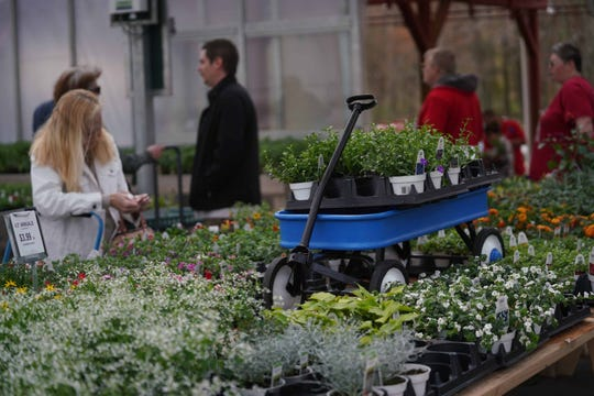 Customers shop the new greenhouses at Willey Farms. After a fire destroyed Willey Farms in Townsend in November, the beloved business opened up the garden center on Friday. They are still working on rebuilding the rest of the business.