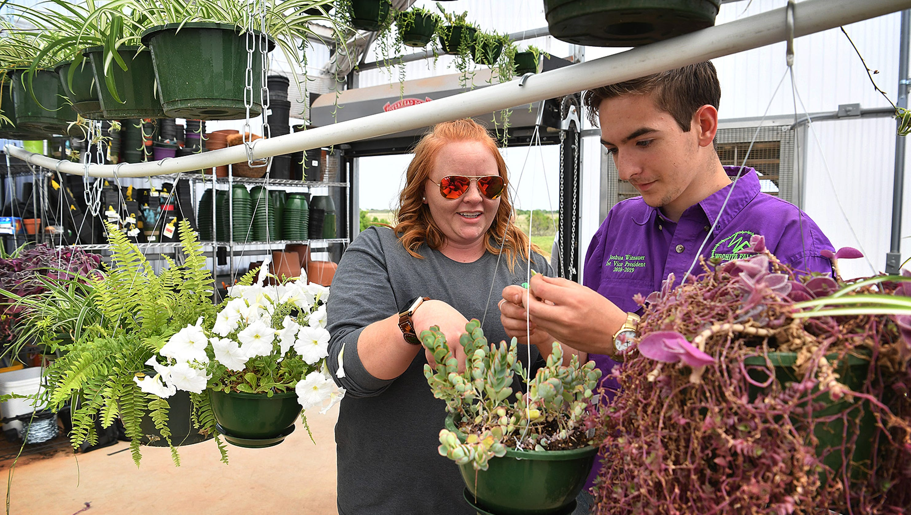 Horticulture students hold annual plant sale at campus greenhouse on green lavender, green gardening, green butternut squash, green beets, green bonsai, green tulips, green nature, green shrubs, green bushes, green perennial, green garden design, green flowers,