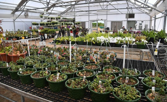 A wide variety of plants are available for the annual plant sale in the Career Education Center's 2,400-square-foot greenhouse.