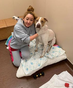 Lyndsey Bond, animal care technician at the Wisconsin Humane Society Door County Campus, with one of the 25 dogs the campus took in April 5 from two other shelters in the state.