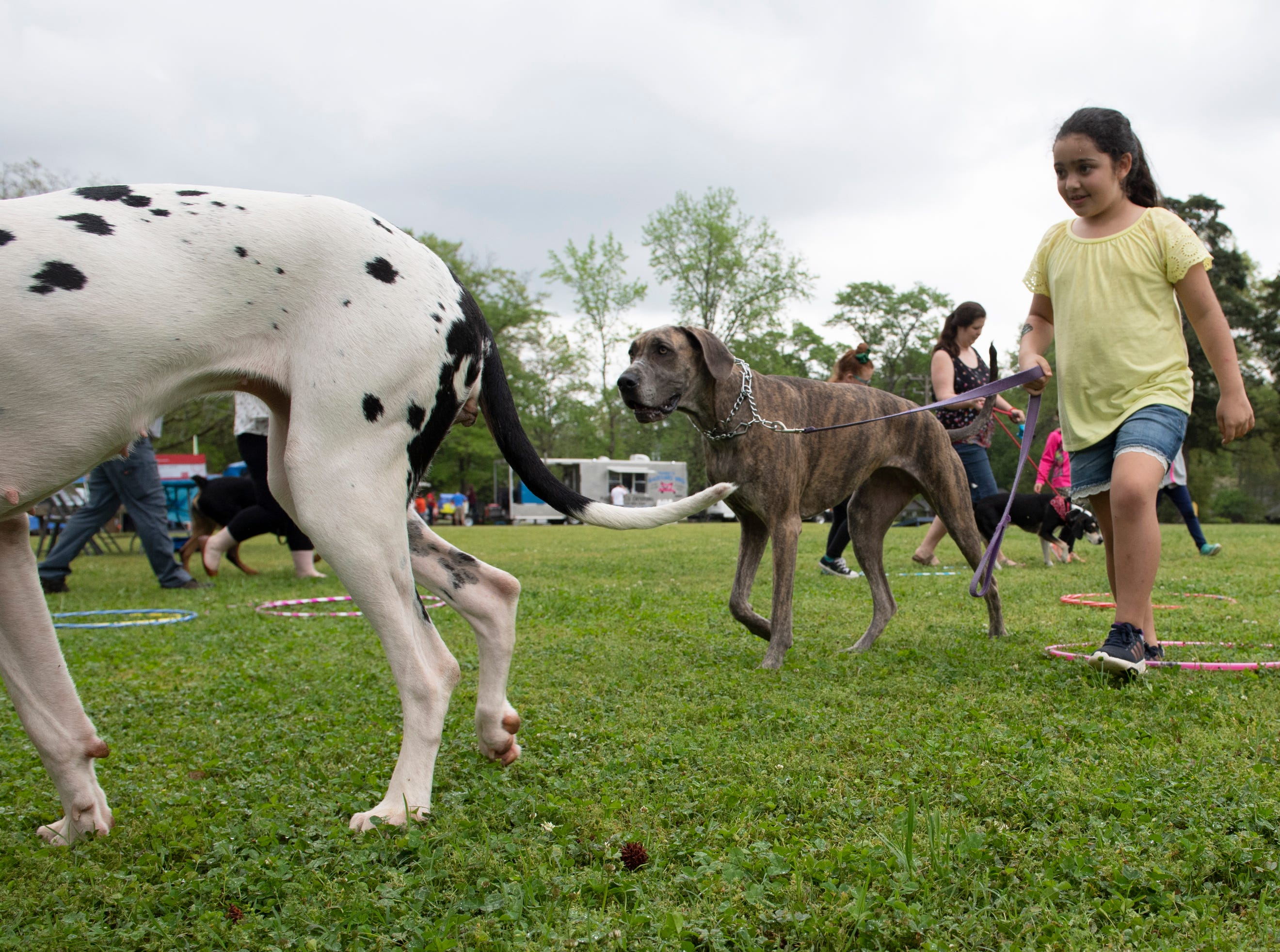 """Lauren Hume, 7, of Simpsonville, competes in """"musical hoops"""" with Luna during Paws for a Cause in Simpsonville City Park Saturday, April 13, 2019."""