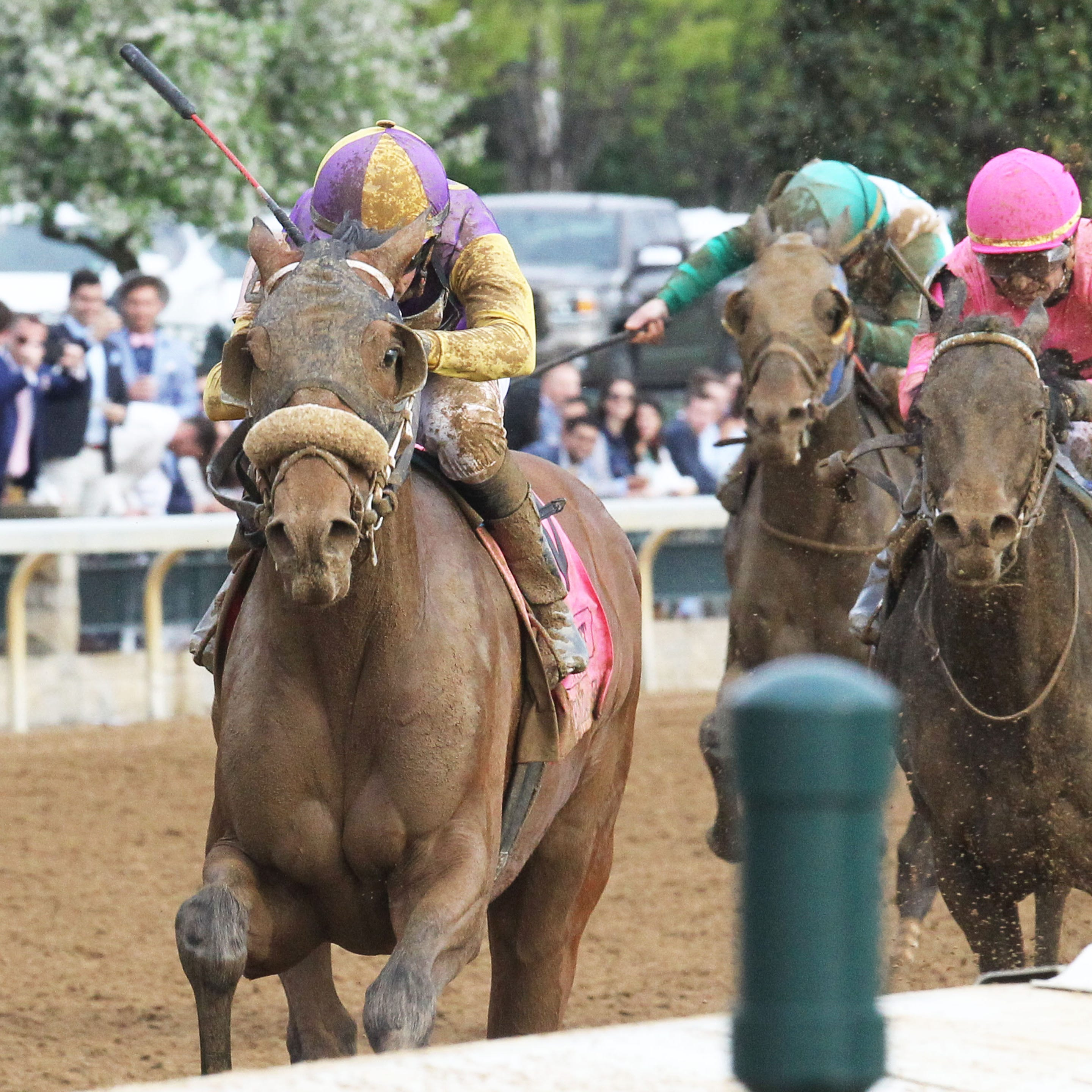 Oddsmaker Mike Battaglia's free expert picks for Keeneland Saturday