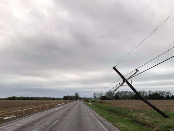 Power lines fell across Louisiana 133 Saturday in Morehouse Parish.