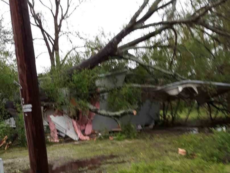 Trees fell over multiple homes in Forest, Louisiana.