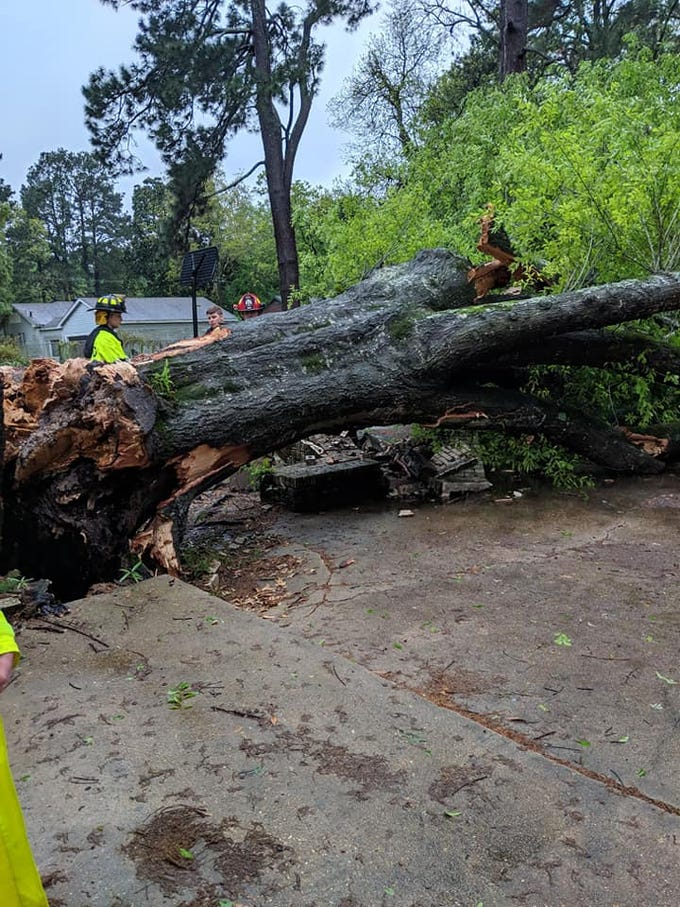 Trees feel and roadways flooded in West Monroe during severe weather Saturday.