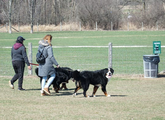 Lyon Oaks Dog Park provides pet owners with lots of room to run their furry beasts and receptacles for waste.