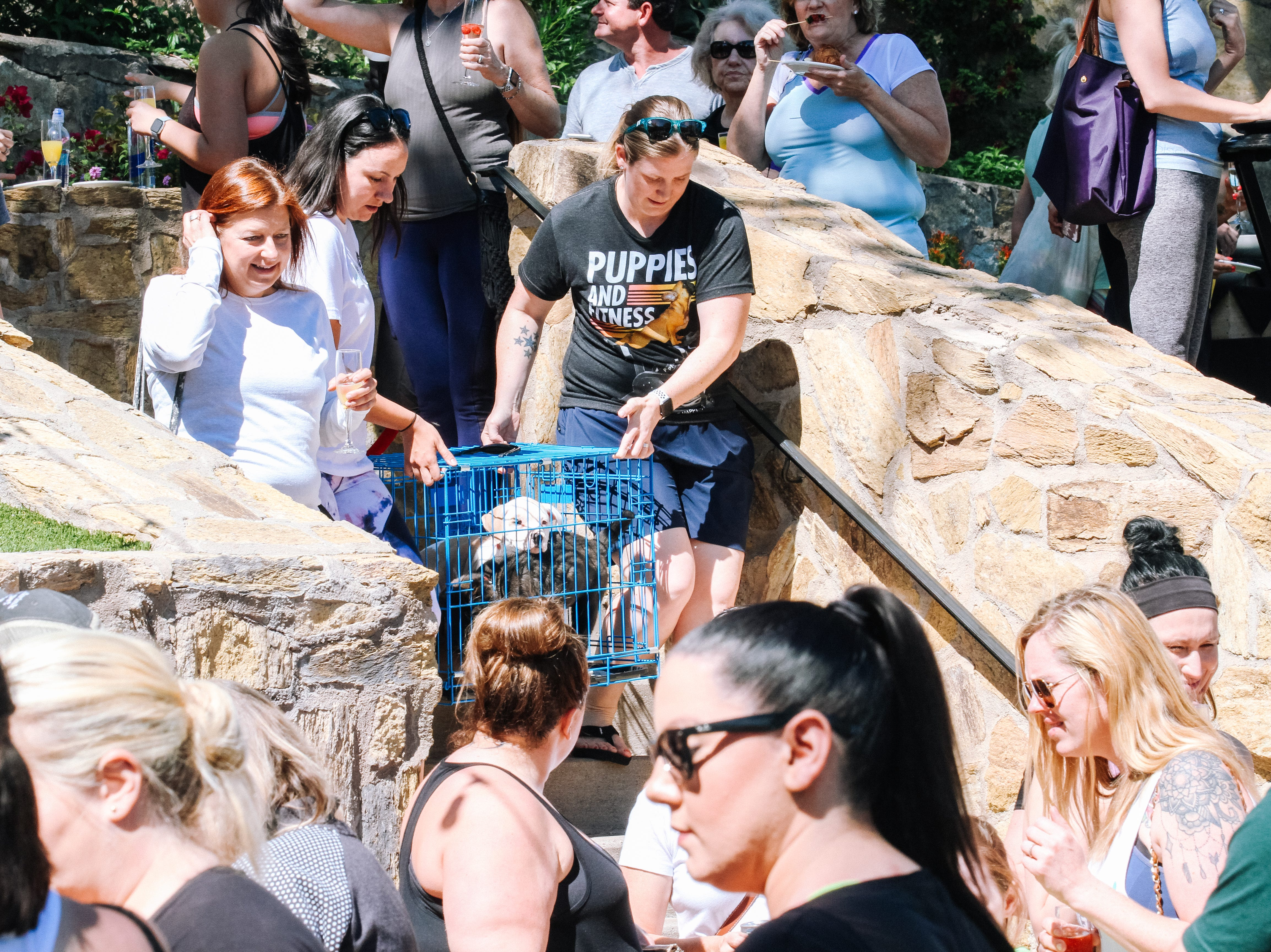 Attendees get a chance to adopt puppies at Puppies, Pilates and Prosecco, an event hosted by Almost There Foster Care at the Wrigley Mansion in Phoenix on April 13, 2019.
