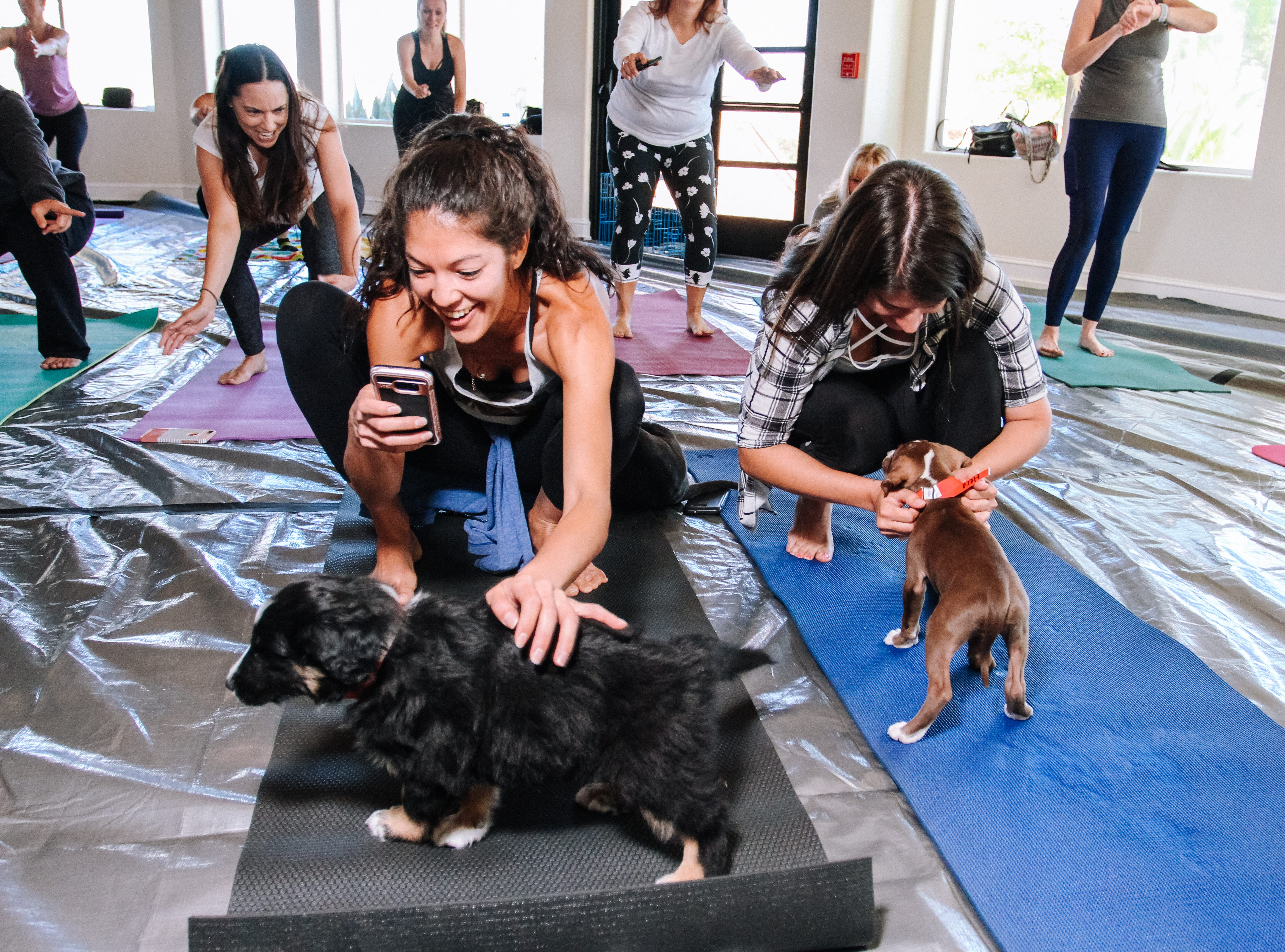 Tirzah Armenta plays with puppies at Puppies, Pilates and Prosecco, an event hosted by Almost There Foster Care at the Wrigley Mansion in Phoenix on April 13, 2019.
