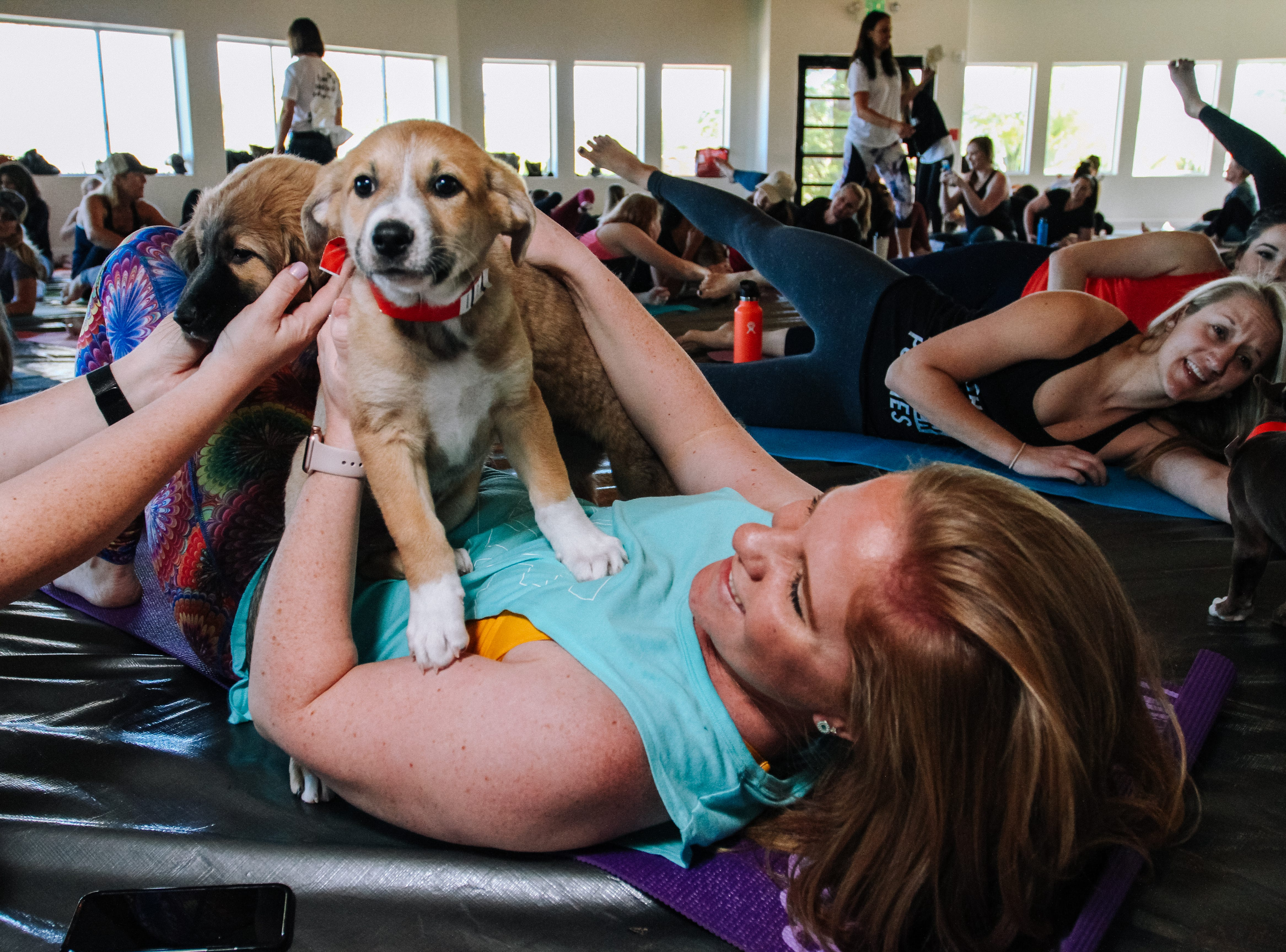 Alex Langley plays with a puppie at Puppies, Pilates and Prosecco, an event hosted by Almost There Foster Care at the Wrigley Mansion in Phoenix on April 13, 2019.