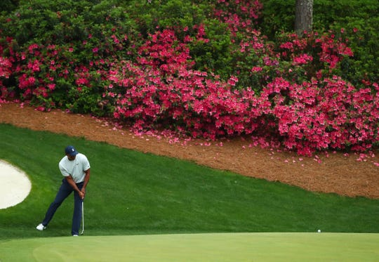 Tiger Woods putts on the 13th green during the second round of The Masters golf tournament at Augusta National Golf Club on April 12, 2019.