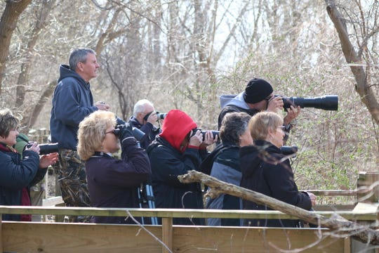 Those who attended the workshop got the chance to try out the tips they just learned in one of the premier birding hotspots in all of the United States, that being Magee Marsh and its world-famous boardwalk — at least among the birding community.