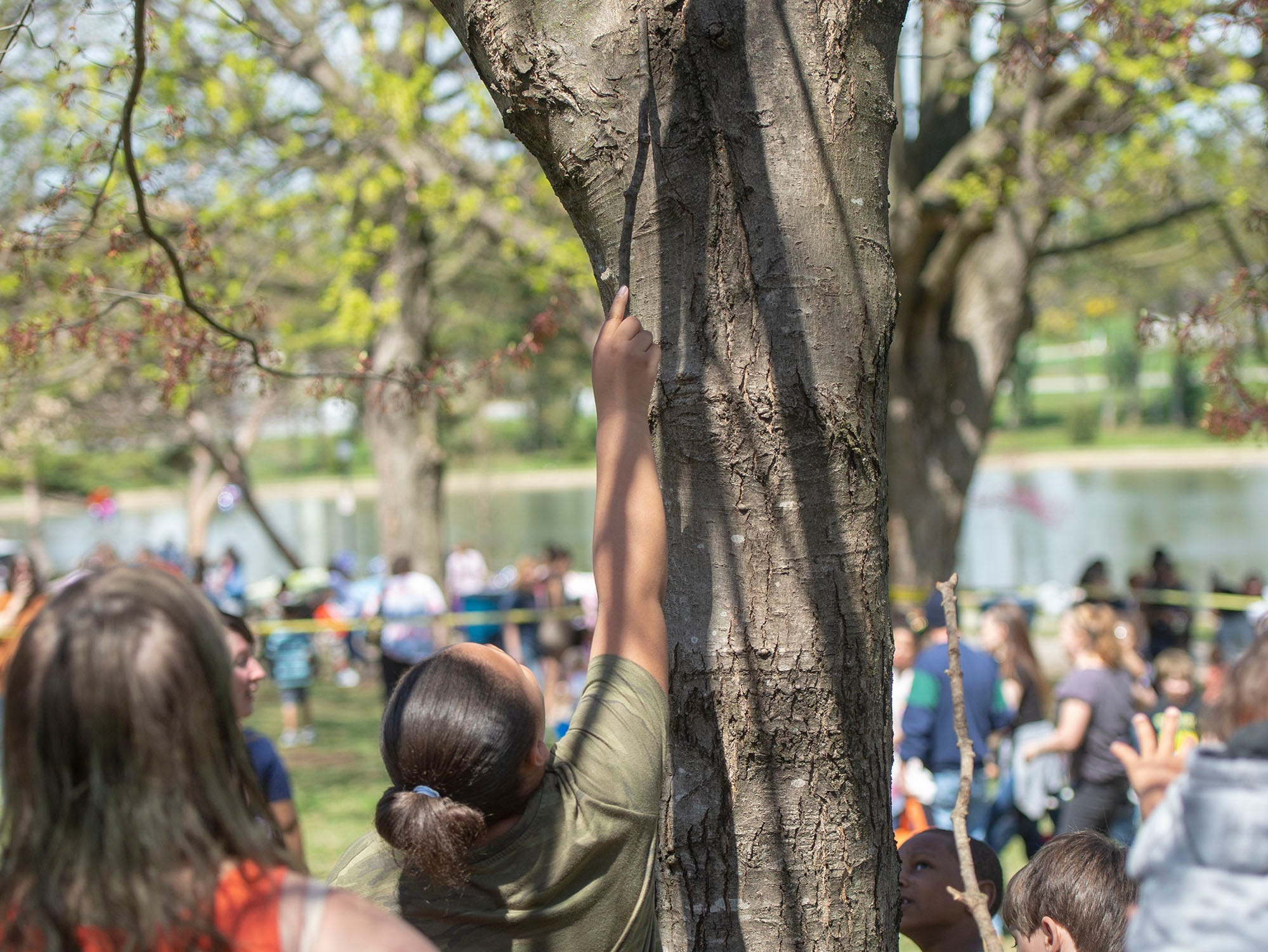 Some taller kids were called on to work on this egg in a tree at the City of York's Easter Egg Hunt at Kiwanis Lake on Saturday, April 13, 2019.
