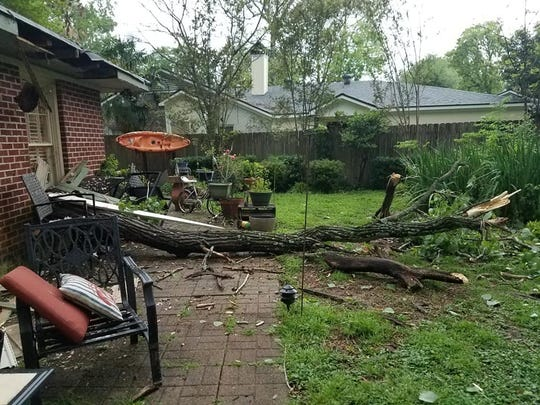 A tree down in the backyard because of the storms at a South Highland house Saturday afternoon. Email your storm photos to Hwildsmith@gannett.com.