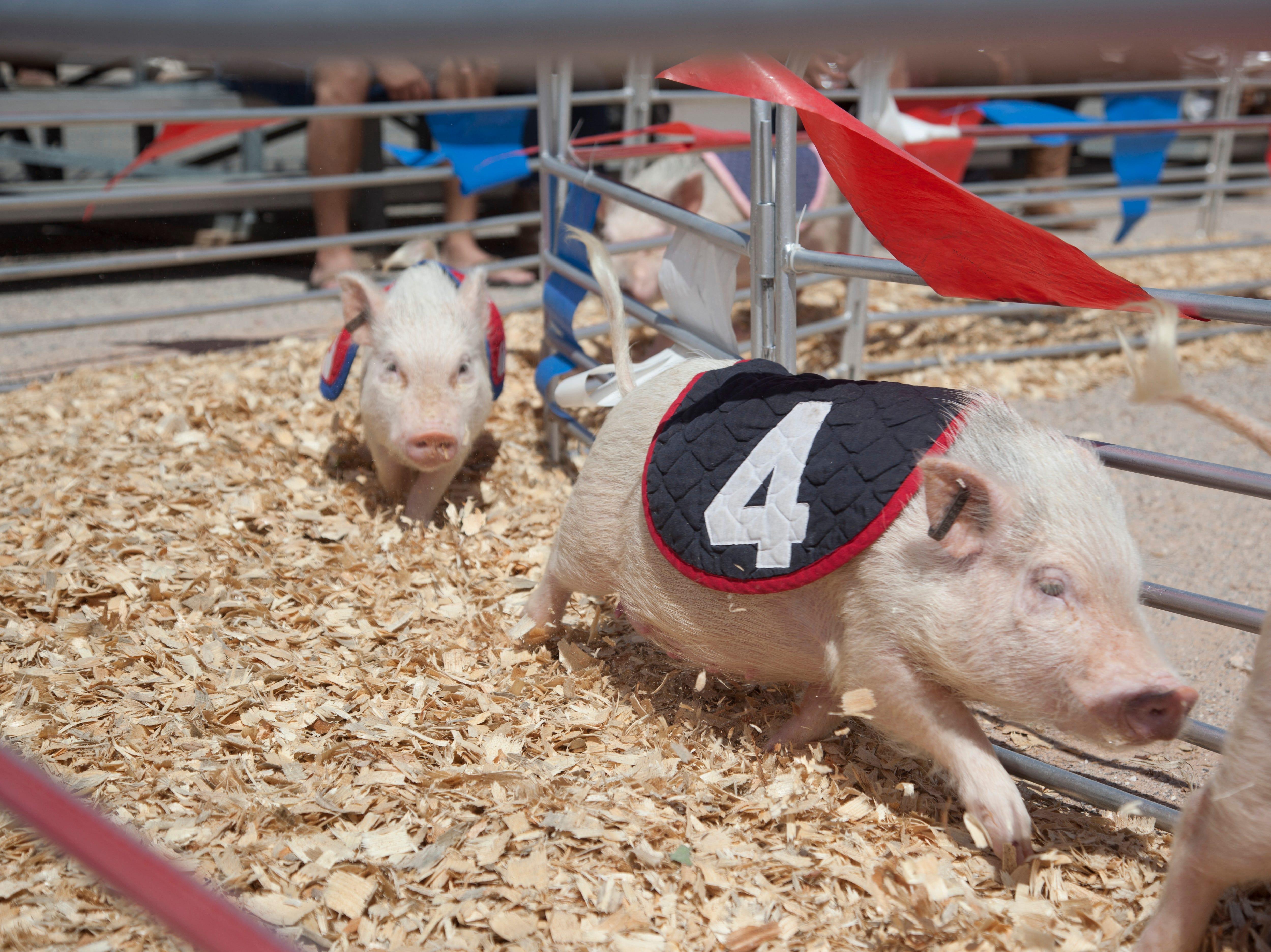The Clark County Fair Wednesday, April 10, 2019.