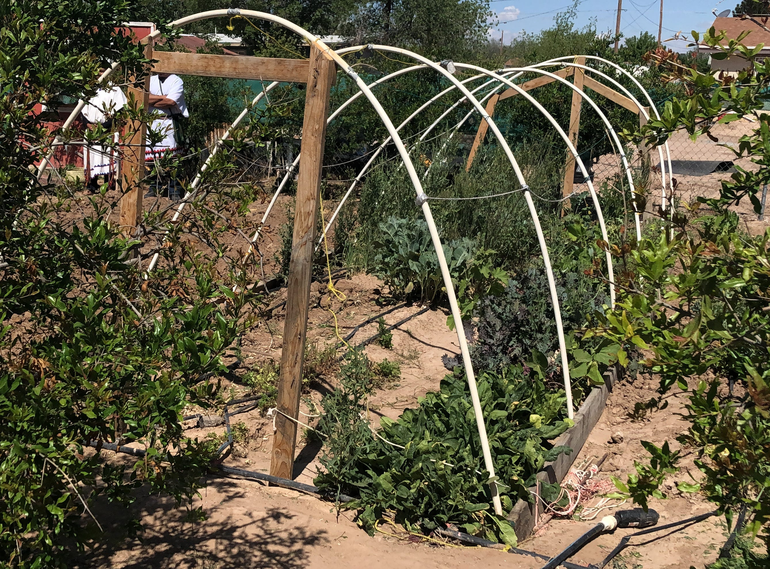 People learned about planting and appreciating natural resources as community members in San Elizario celebrated the start of the growing season at a gathering Saturday, April 13, 2019, at Ayuda Inc.