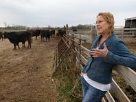 FILE - In this March 19, 2019 photo, Linda Woodruff talks about her wagyu cattle during an interview at Silverwood Ranch southeast of Enid, Okla.