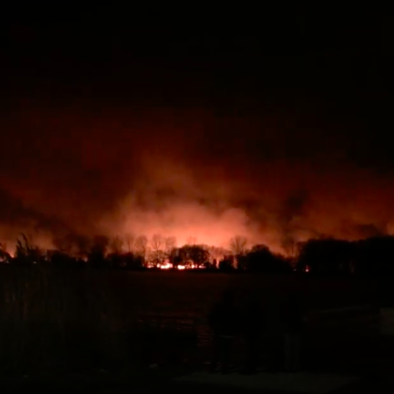 Overnight marsh fire on Detroit River's Fighting Island extinguished
