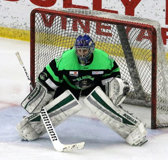 Troy Passingham had 36 saves for Elmira in Game 2 of the Federal Hockey League semifinal series against the Watertown Wolves on April 13, 2019 at Elmira's First Arena.