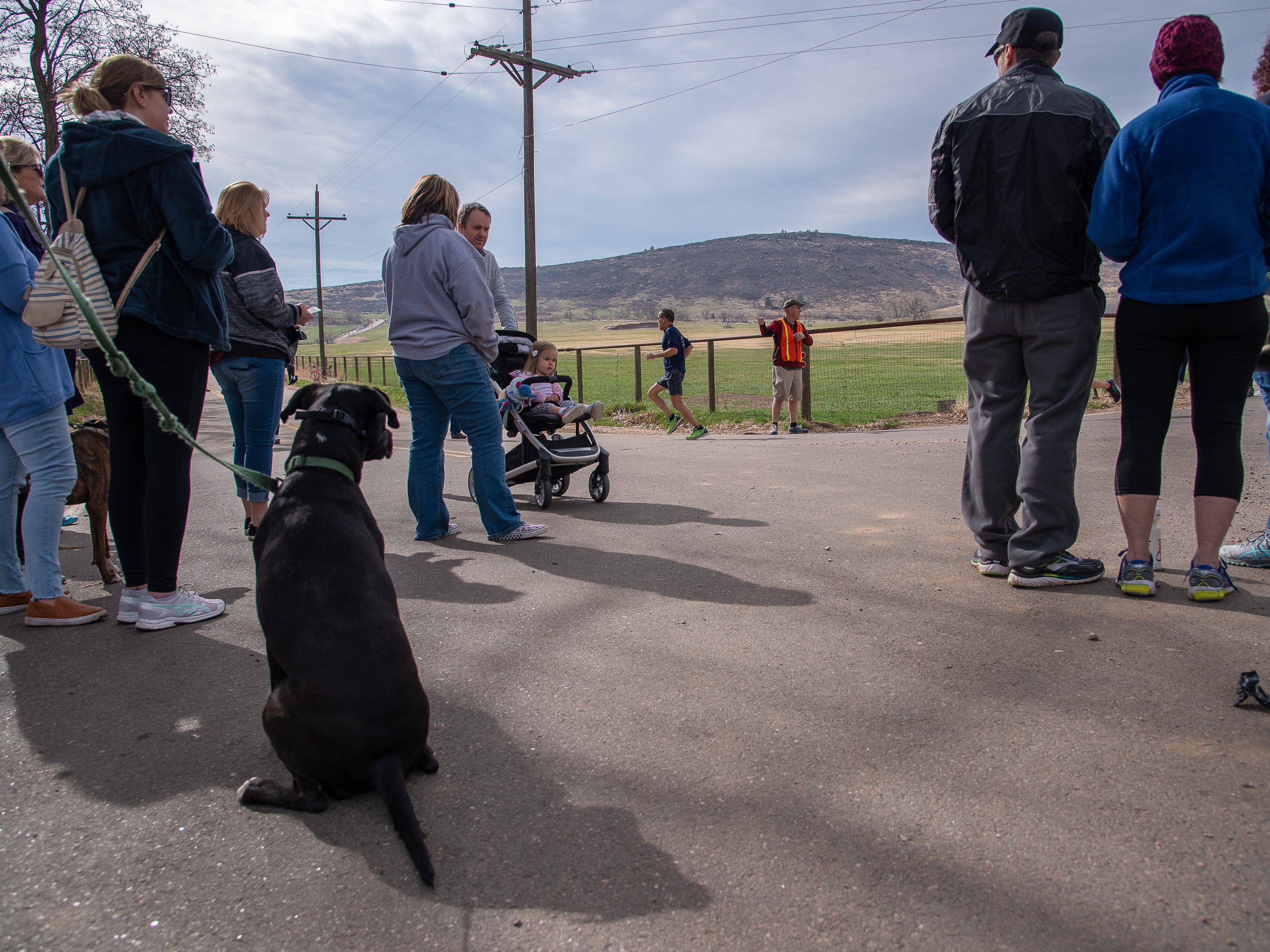Spectators gather near Bingham Hill Road during the Horsetooth Half Marathon on Sunday, April 14, 2019, in Fort Collins, Colo.