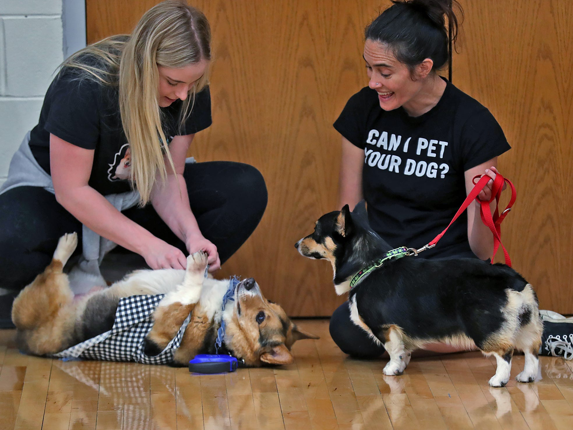 Katie Bottorff, left, with Maverick and Whitney Lazzara with Ruby chat between events at the Indianapolis Corgi Limbo & Costume Contest at IUPUI, Sunday, April 14, 2019.  The event benefits children orphaned by HIV/AIDS in eSwatini, Africa.  It is presented by the Give Hope, Fight Poverty IUPUI chapter.