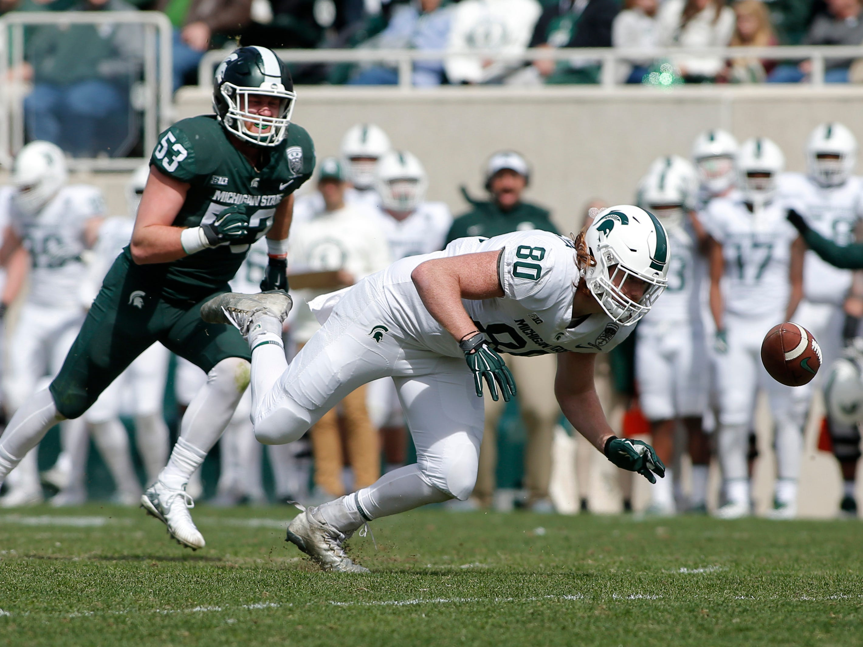 Michigan State tight end Matt Seybert, right, tries unsuccessfully to pull in the ball on a pass reception against linebacker Peter Fisk (53) during an NCAA college football spring scrimmage game, Saturday, April 13, 2019, in East Lansing, Mich. (AP Photo/Al Goldis)