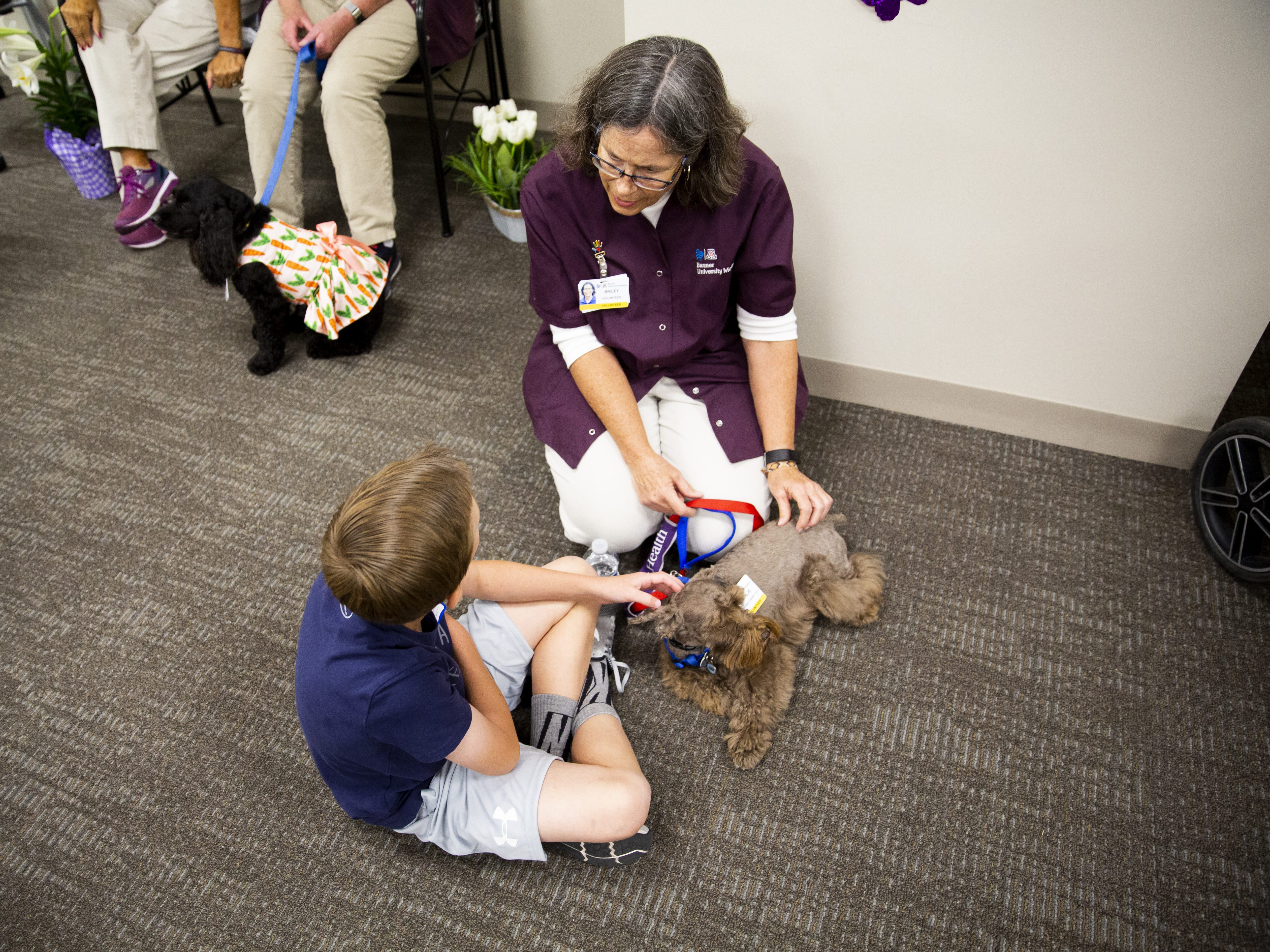 Tyler Austin pets Charlie with volunteer Briley Culton during the Preemie NICU Reunion at Banner University Medical Center on April 13, 2019.