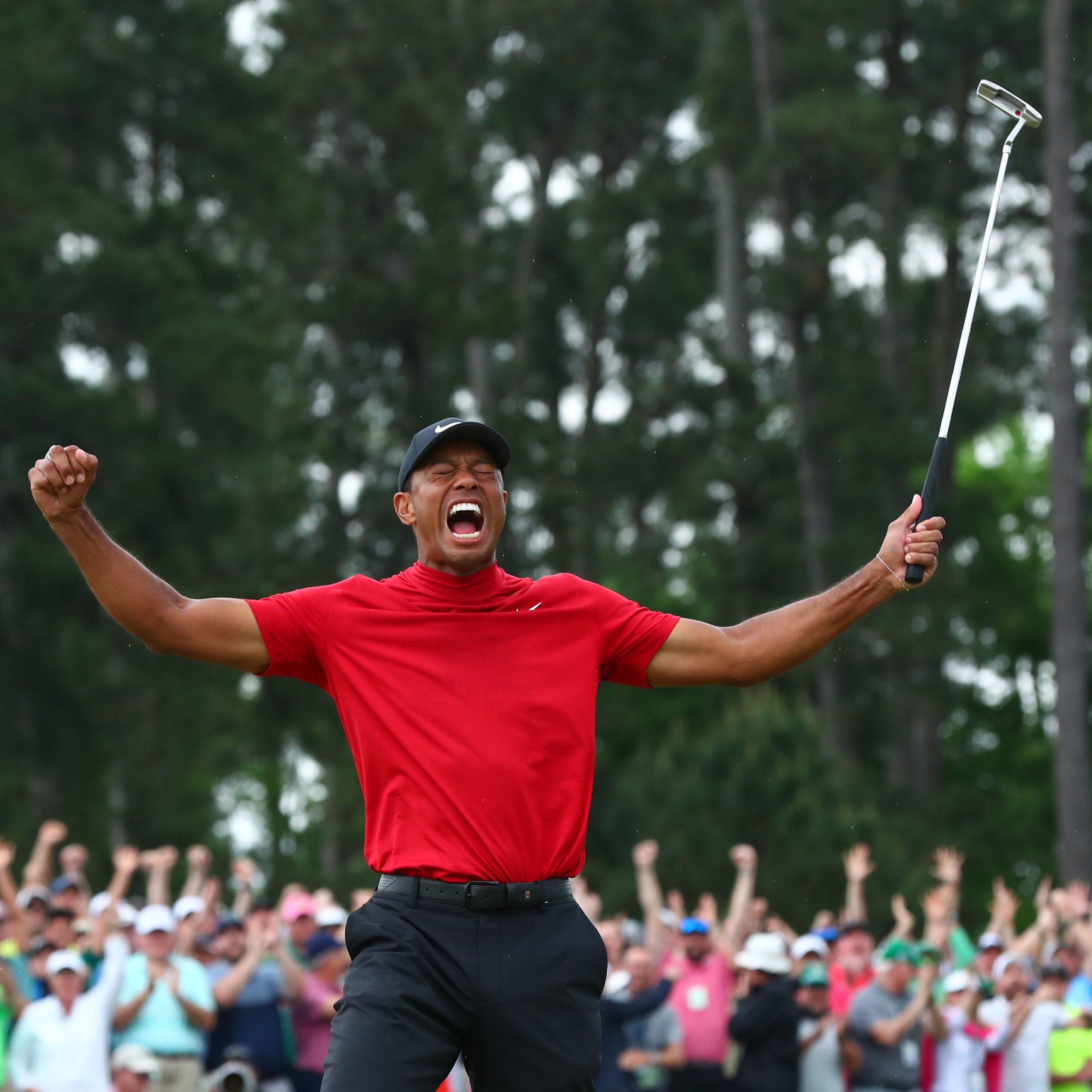 Tiger's grrrrrreat ... again!