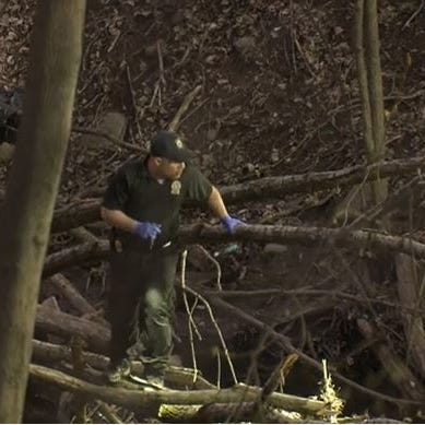Man found dead in woods in Spring Valley; police investigating