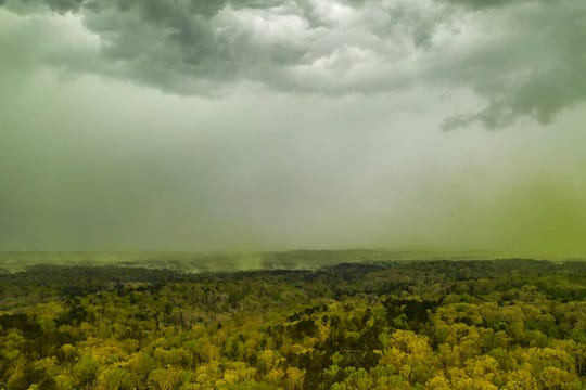 Plumes of pollen rise to meet a thunderstorm over Durham, N.C.