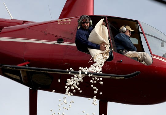 Helicopters will drop marshmallows over metro Detroit parks Friday morning.