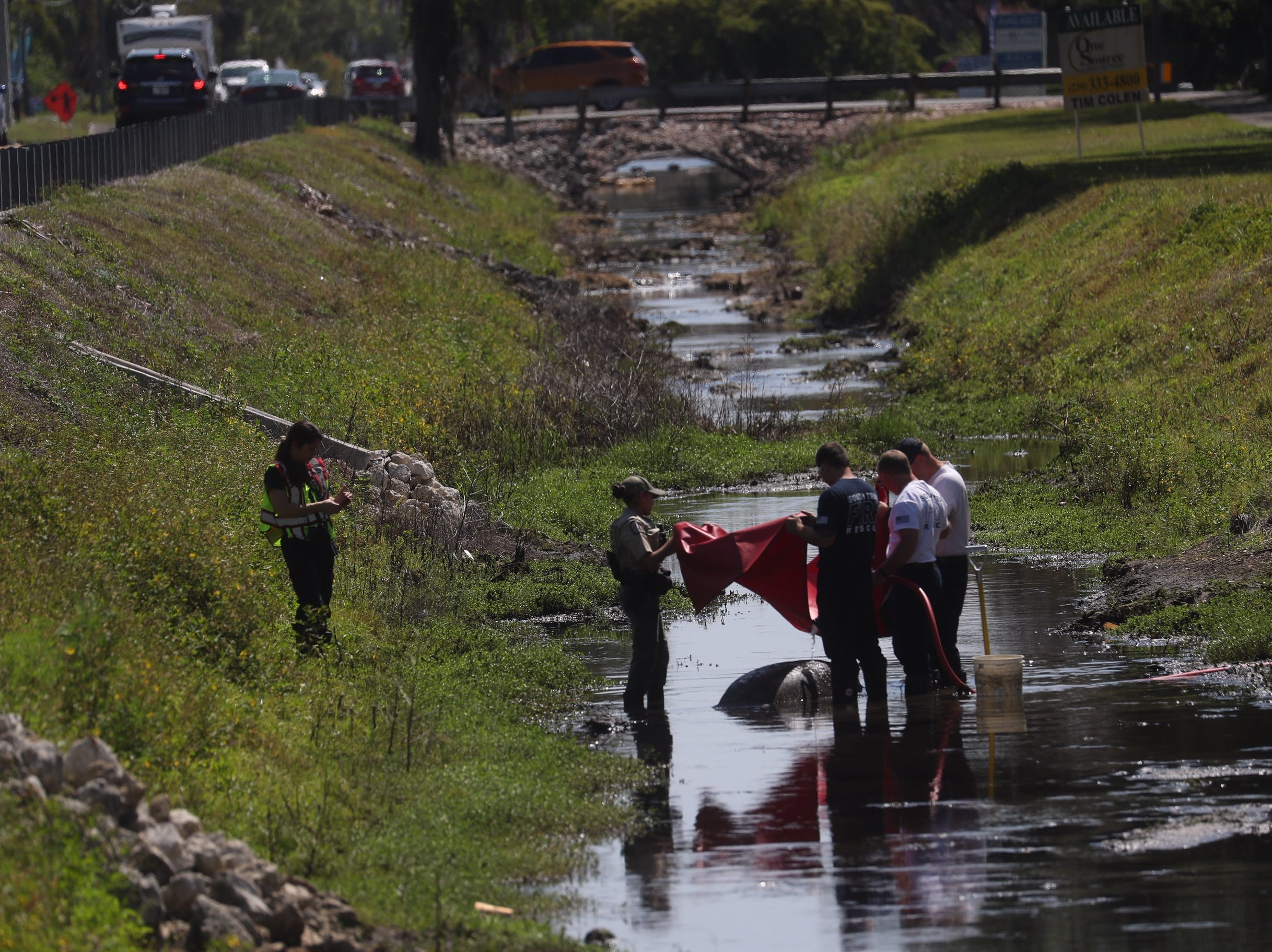 Emergency crews attempt to rescue a manatee that was found stuck in a drainage canal off of Brantley Road near Summerlin Road in Fort Myers on Monday, April 15, 2019.