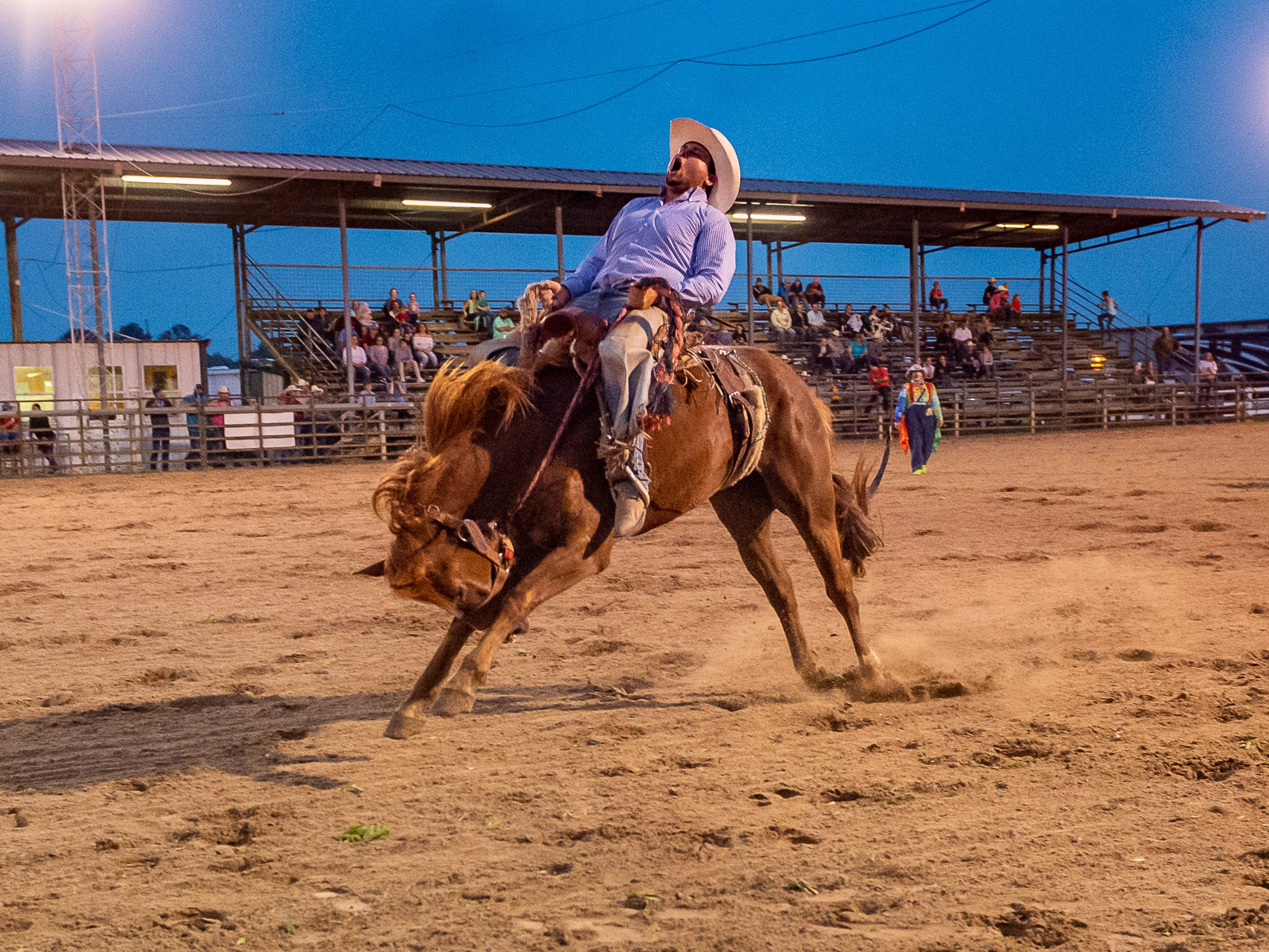 Bronc rider Marty Frisard III as the Cajun Rodeo Association host the Cowboys Spring Stampede 19 Rodeo at Cowboys Arena in Scott, LA. Saturday, April 13, 2019.