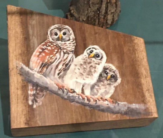 Audubon Corkscrew Swamp Sanctuary volunteer Leslie Burgess painted animals on fragments of boardwalk damaged in Hurricane Irma. The paintings raised over $8,000 to help pay  for boardwalk repairs at the swamp. She has also designed a couple of the latest volunteer pins.