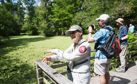 Audubon Corkscrew Swamp Sanctuary volunteer Leslie Burgess talks with visitors on Wednesday April, 10, 2019. Burgess, a longtime volunteer, was recently honored for a special service project. She painted animals on fragments of boardwalk damaged in Hurricane Irma. The paintings raised over $8,000 to help pay for boardwalk repairs at the sanctuary.