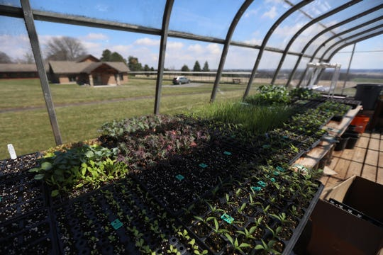 The monks at the Abbey of the Genesee grow some of their own food.  Last year they started a CSA, community-supported agriculture, with shares in the program.  They offer some vegetables.