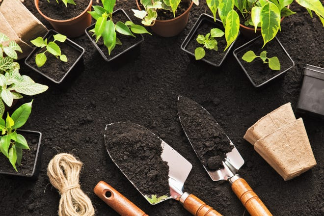 The 2021 session for the Extension Master Gardener Volunteer Program will run from Feb. 4 through April 29.