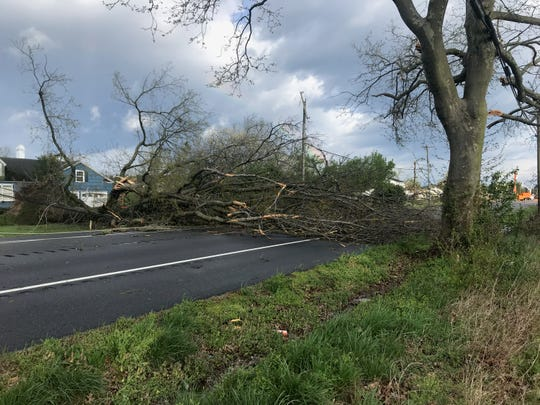 Trees block Seaford Road near Laurel, Delaware, after major storm ripped through the area on Monday, April 15, 2019. Several homes were affected in the area.