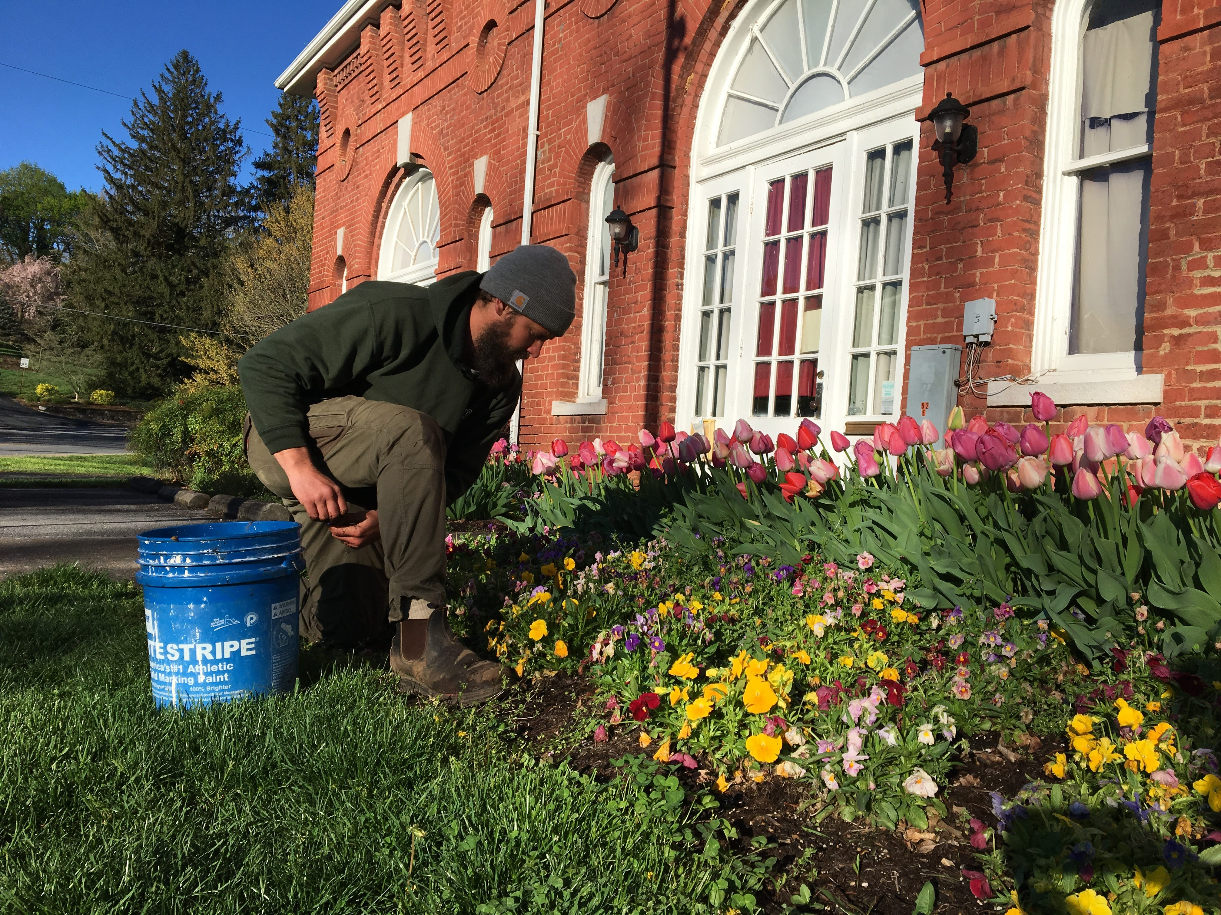 Horticulturist Ben Hastert finds weeds in the flower bed outside of the Stonewall Brigade Band Bandroom.