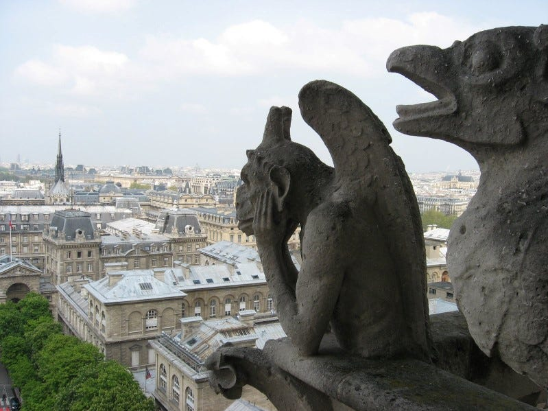Notre Dame, 2008: We went up into the bell tower. Lots of steps to climb and I don't think I could do it now, not without resting often— which ticks off the people behind you! I wanted to see the gargoyles and the bells.I am so sad about the fire. That was the last time I was there.