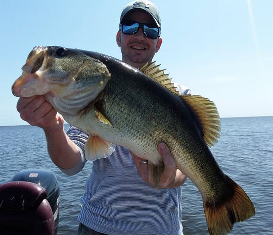 Alex Noerr from Virginia caught and released this bass plus 60 more while fishing Lake Okeechobee Monday with Capt. Nate Shellen of Okeechobeebassfishing.com.