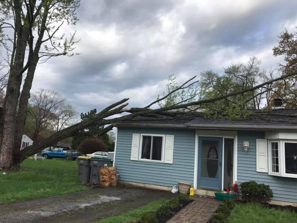 Overnight storms left a tree downed on tis Newark home.