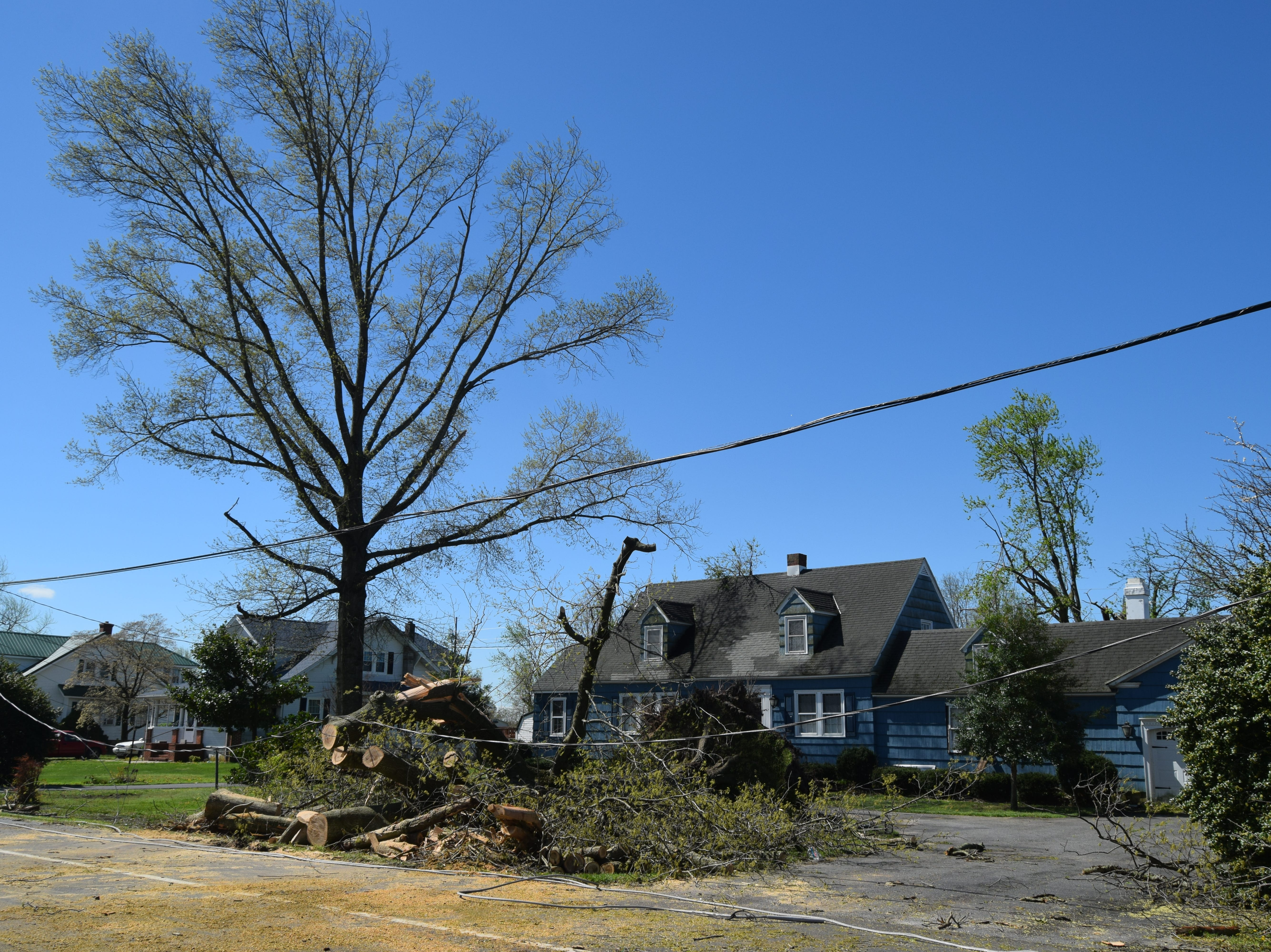 The Phillips family home on Seaford Road in Laurel suffered some damage from downed trees after the storm.