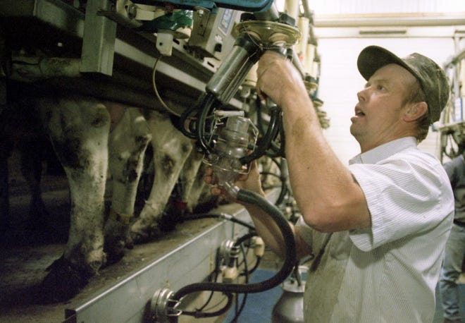 Dairy producers who were in business as of June 1, 2019, will receive a $0.20 per hundredweight payment on production history.