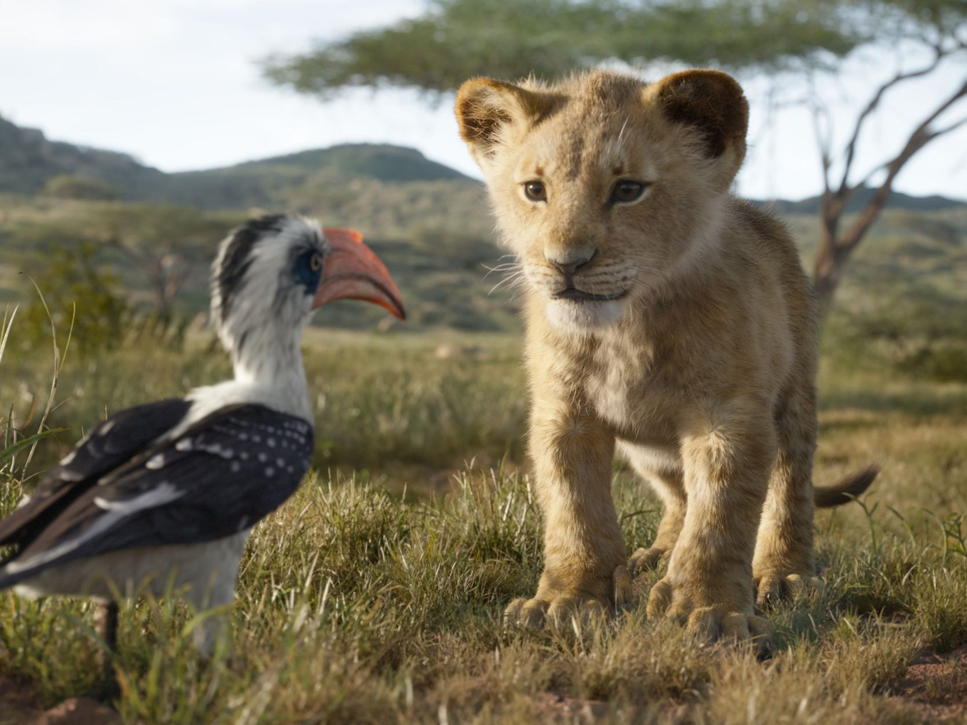 "Young Simba (voiced by JD McCrary, right) chats with his dad's loyal majordomo Zazu (John Oliver) in ""The Lion King."" (July 19)"