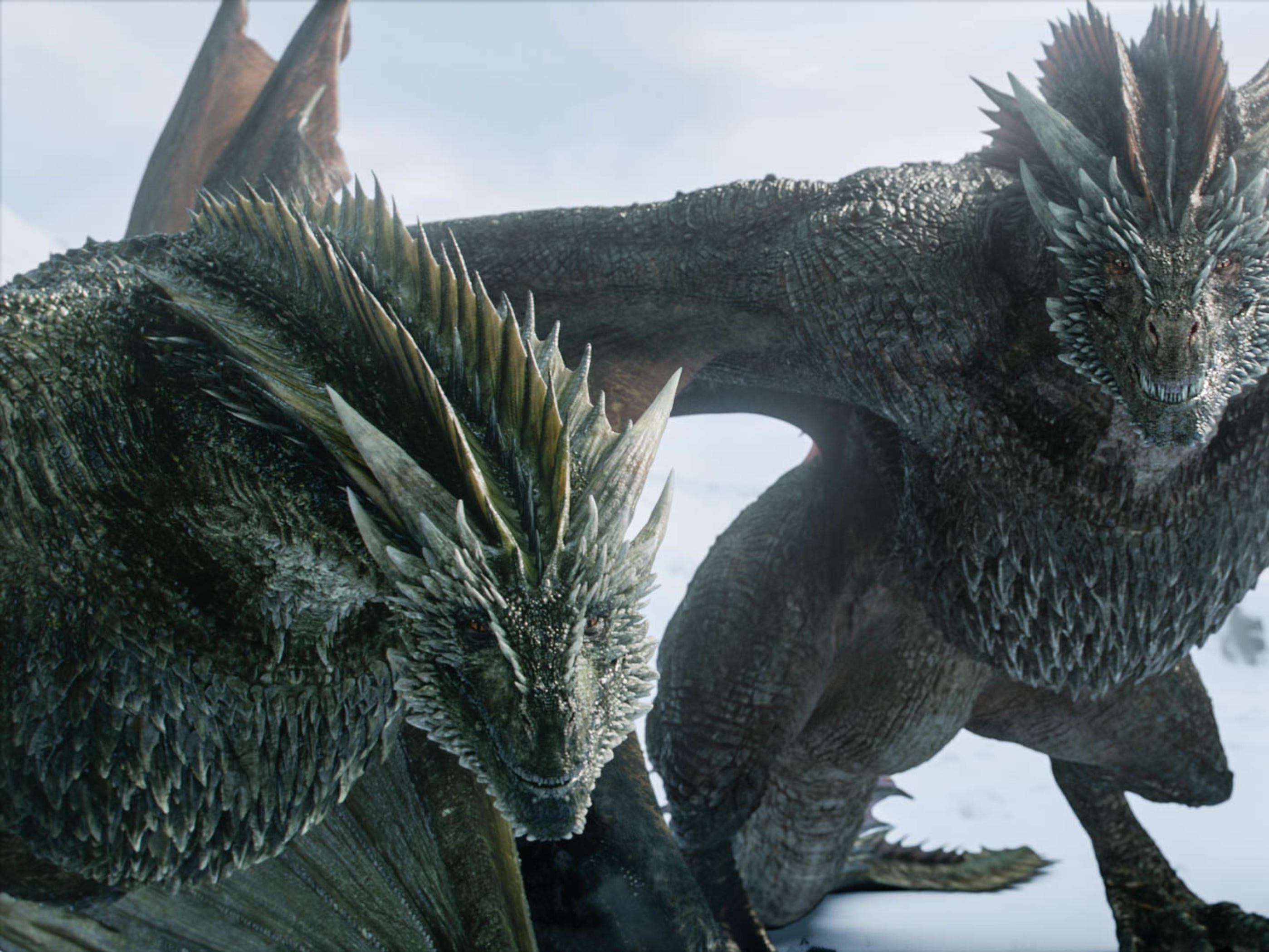 Daenerys' dragons in the north.