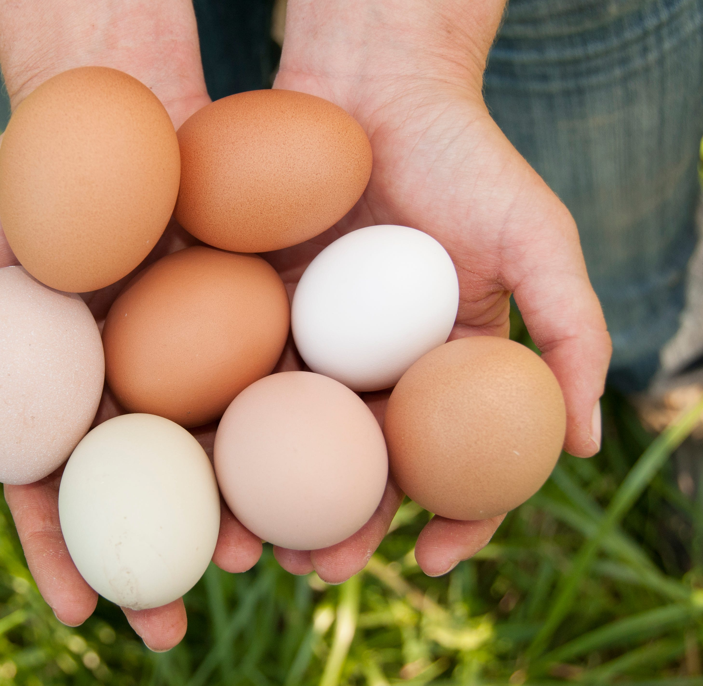 Tailgate Market Report:  Vendors selling eggs in time for Easter holiday