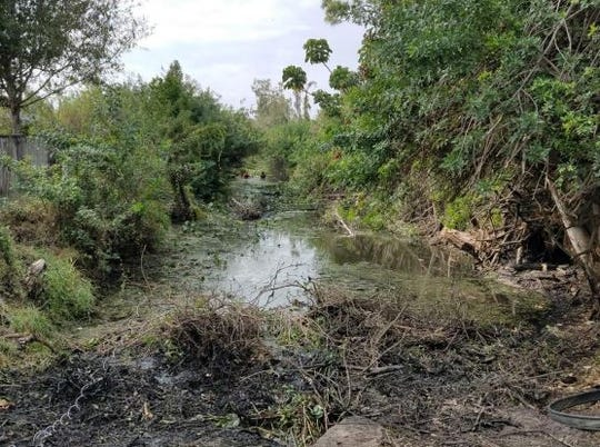 Plant debris clogged canals in the Mullock Creek watershed, causing flooding in the summer of 2017.